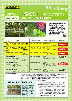thumbnail of ぶどうチラシ copy
