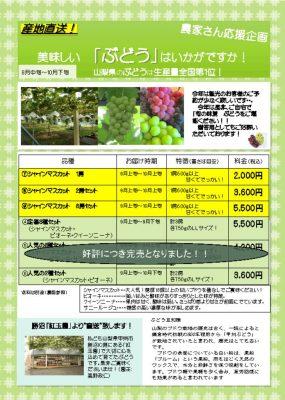 thumbnail of 新ぶどうチラシ copy